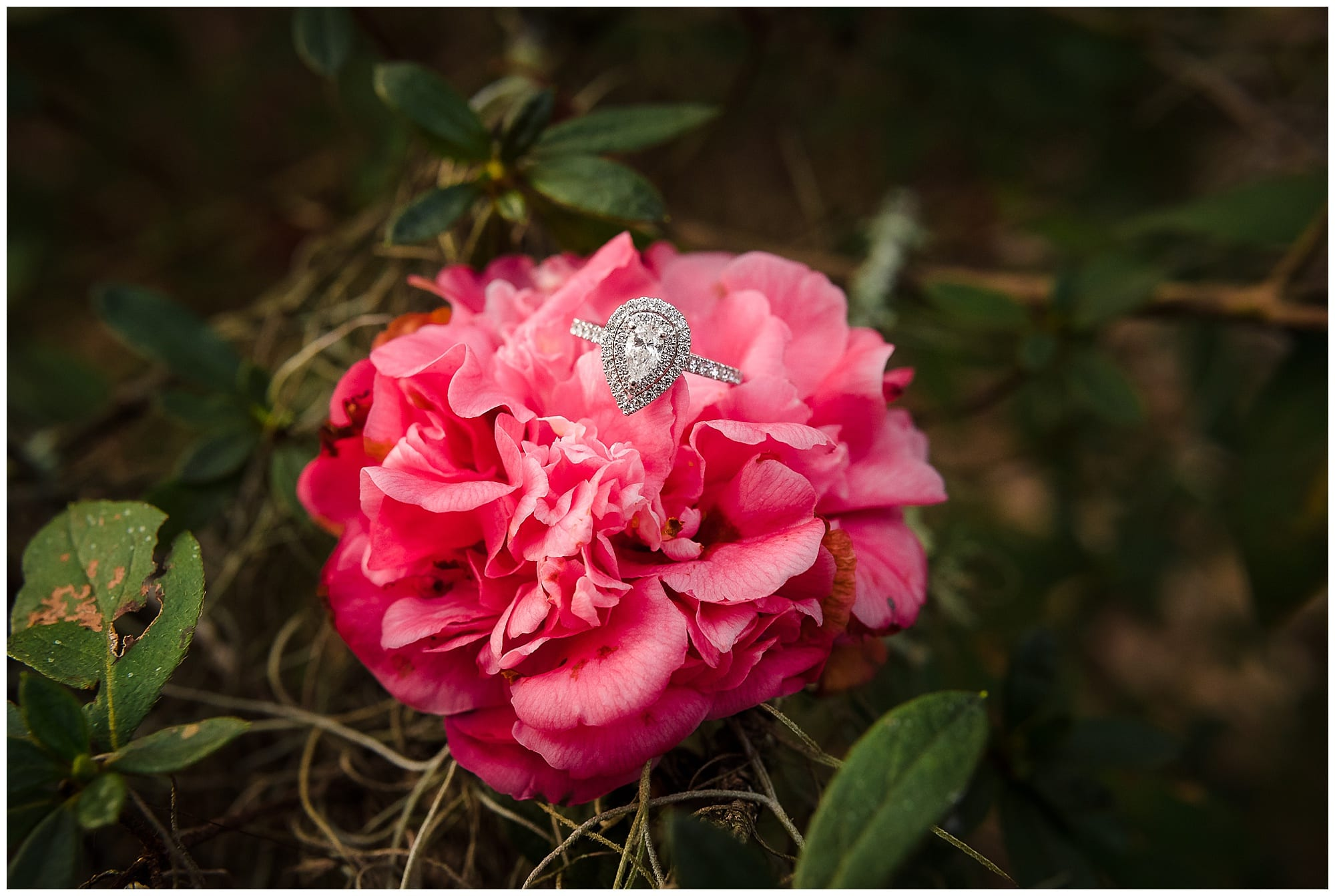 engagement ring with pink flower at rosedown plantation