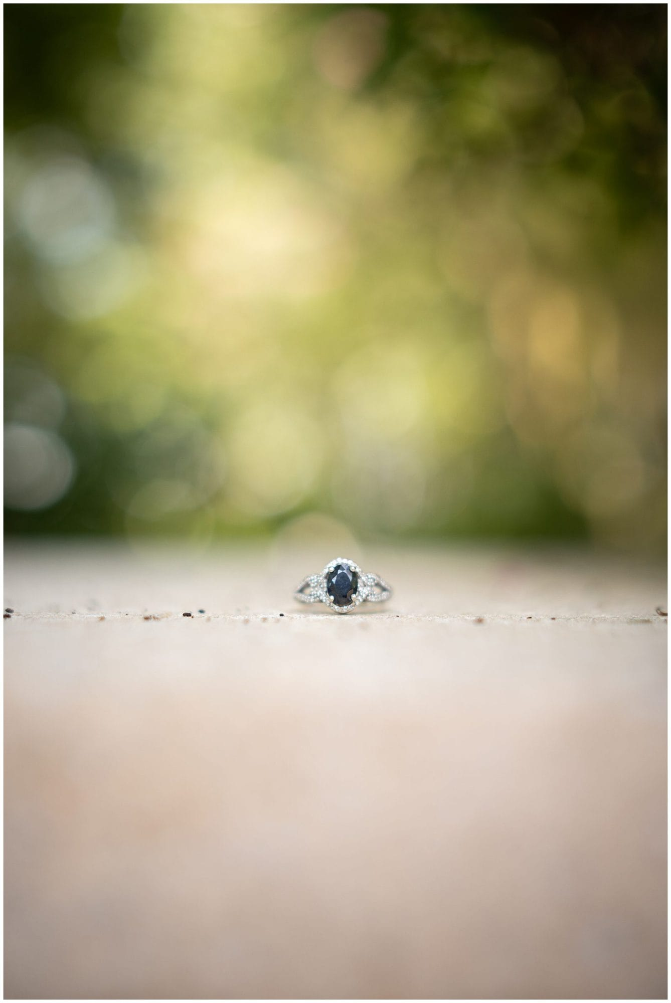 sapphire engagement ring at Windrush gardens