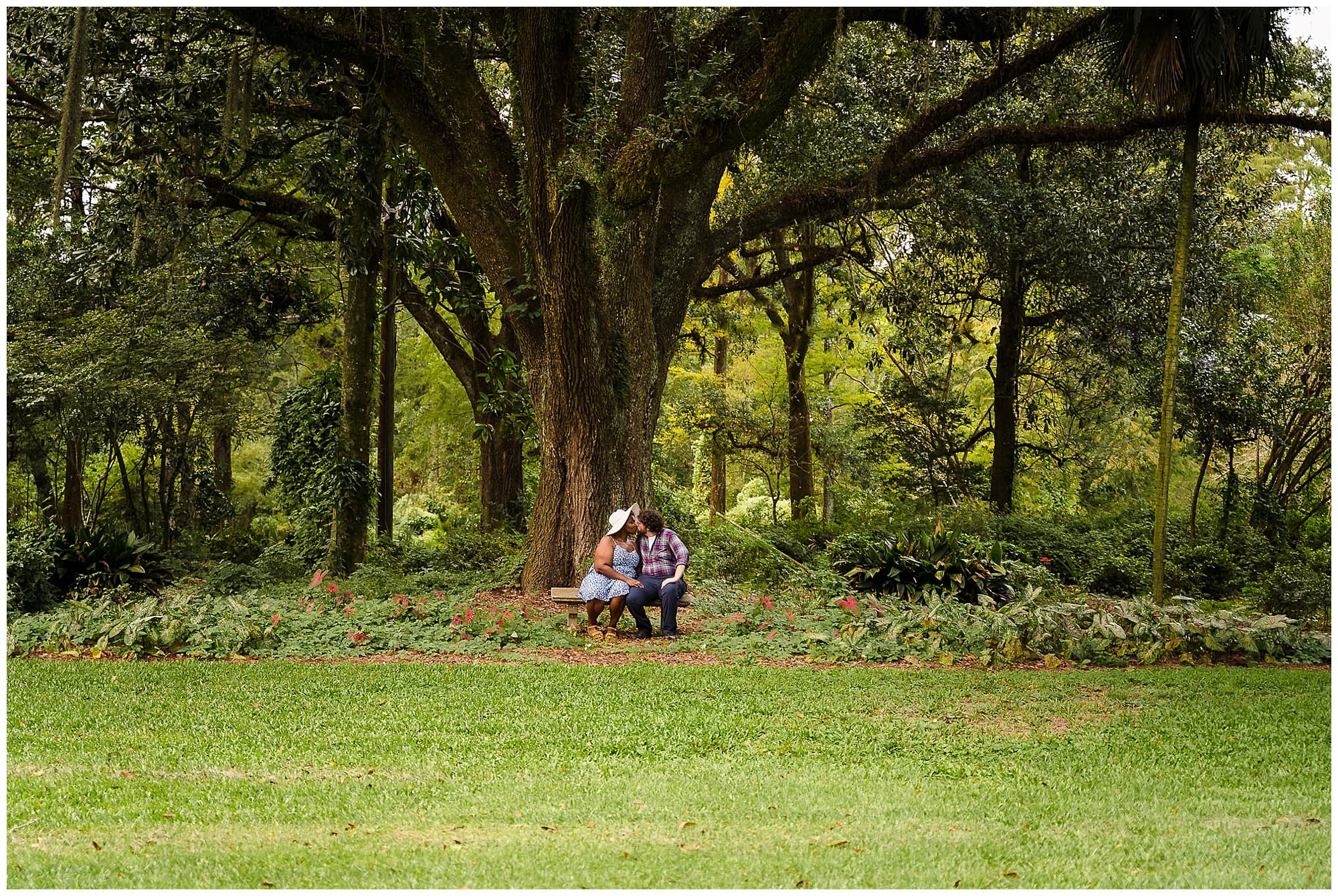 couple sitting under tree in Windrush Gardens Baton Rouge engagement session